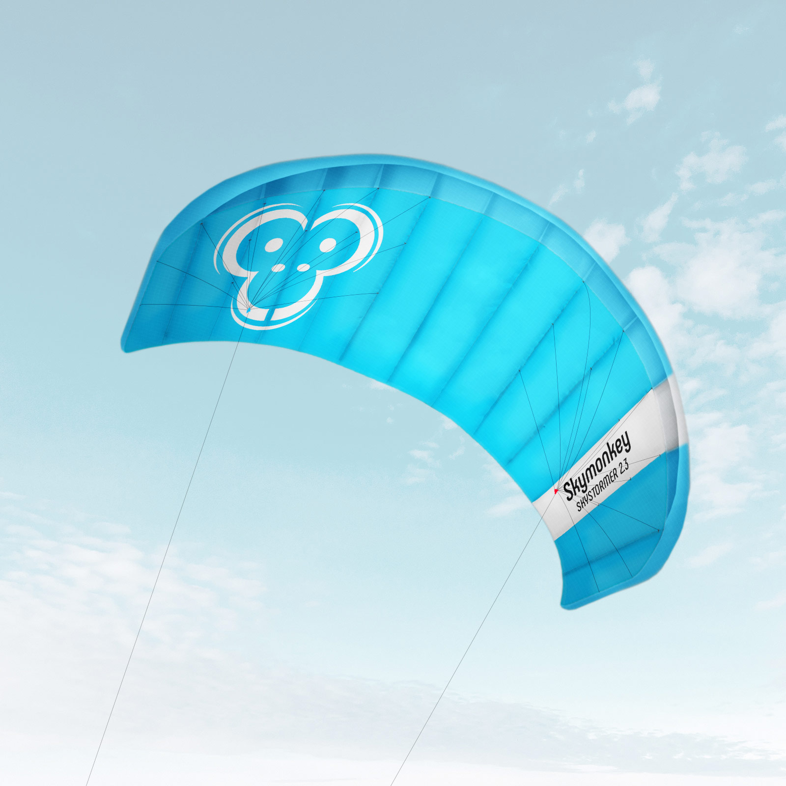 Indexbild 20 - Lenkdrachen SKYMONKEY Skystormer Lenkmatte Flugdrachen Kite Drachen Lenk Matte