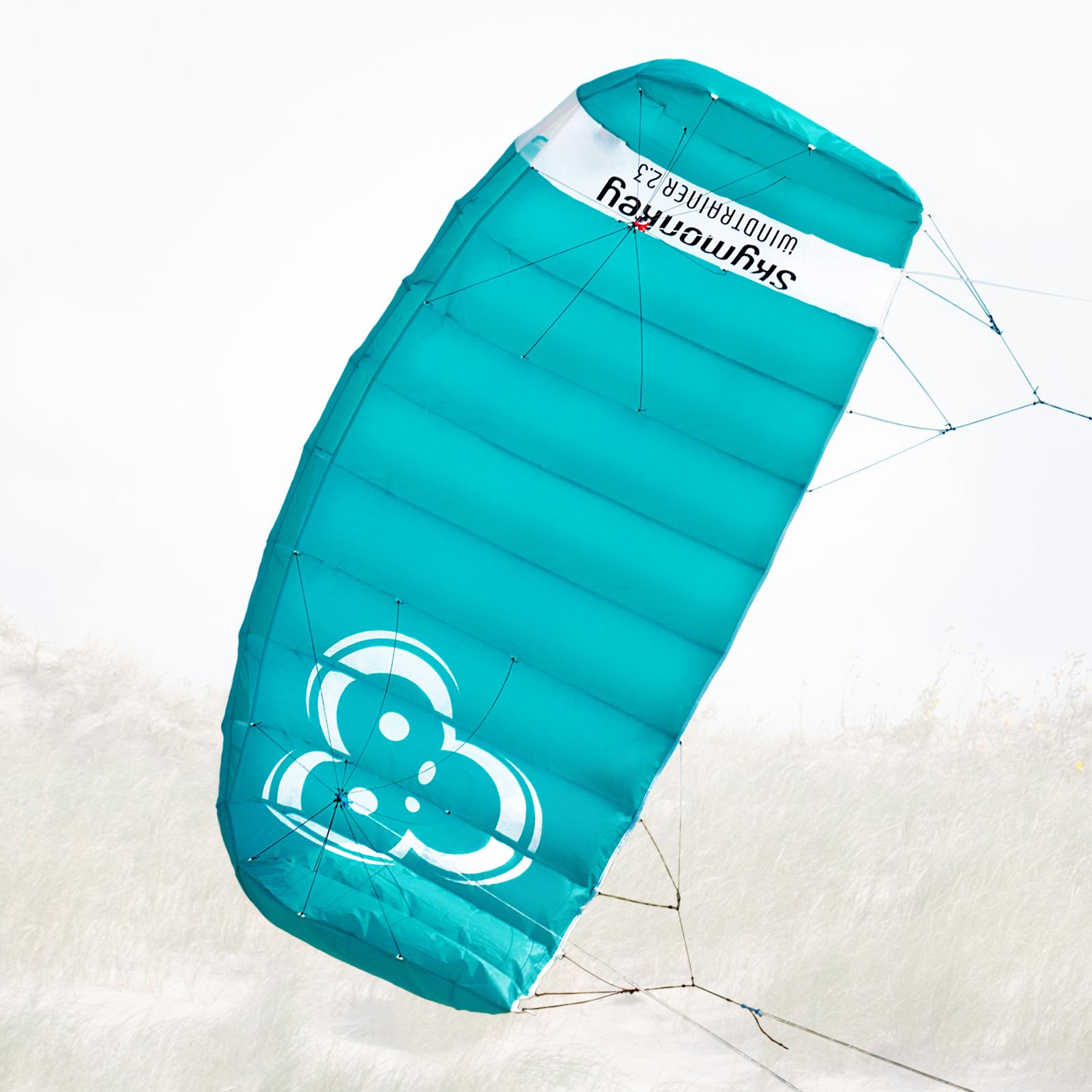 Lenkmatte SKYMONKEY Windtrainer Trainerkite Kite Lenkdrachen Drachen Drachen Drachen Lenk Matte b4f5cb