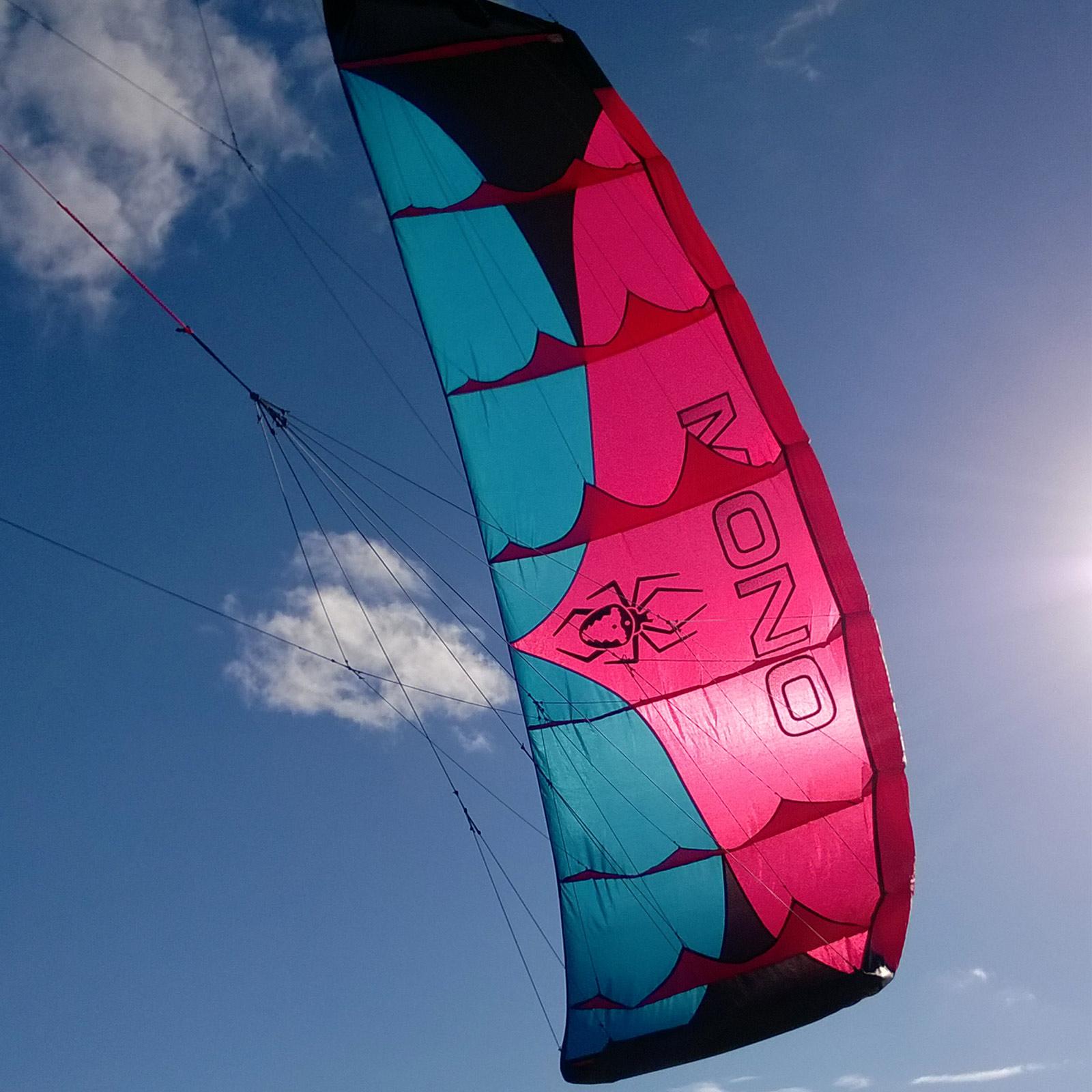 Kite SPIDERKITES Mono 2.0 Lenkmatte Lenk Drachen Matte Lenkdrachen Powerkite
